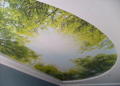 Оригинальный потолок с арт печатью