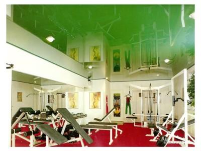 Натяжной потолок в спортивном зале