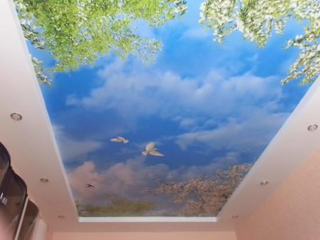 Небо зрительно поднимает высоту комнаты