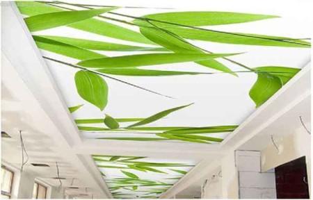 Натяжной потолок с растительными мотивами