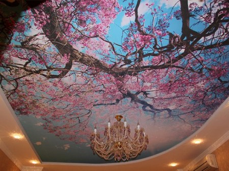 Такой потолок станет украшением помещений в доме, квартире