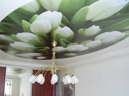 Особенно эффектно, оригинально и современно смотрится натяжной потолок, на который нанесена фотопечать