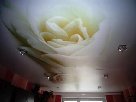 Натяжной потолок из сатина с фотопечатью