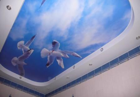 Небо с помощью фотопечати приподнимает пространство