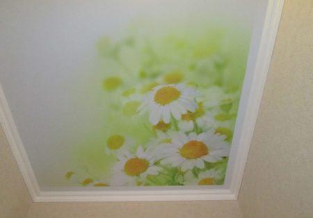 Фото тканевого полотна с узорами из ромашек, как лучший выбор для кухонного пространства