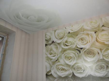 Рисунок возможно наносить на потолочное покрытие и стены, фото