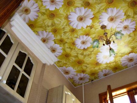 Натяжной потолок в интерьере кухне, оформленный посредством фотопечати