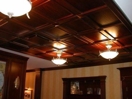 Оформление помещения с помощью конструкции тёмного цвета