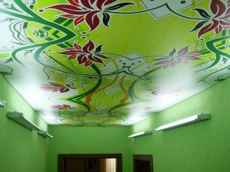 Потолок с нанесением фотопечати